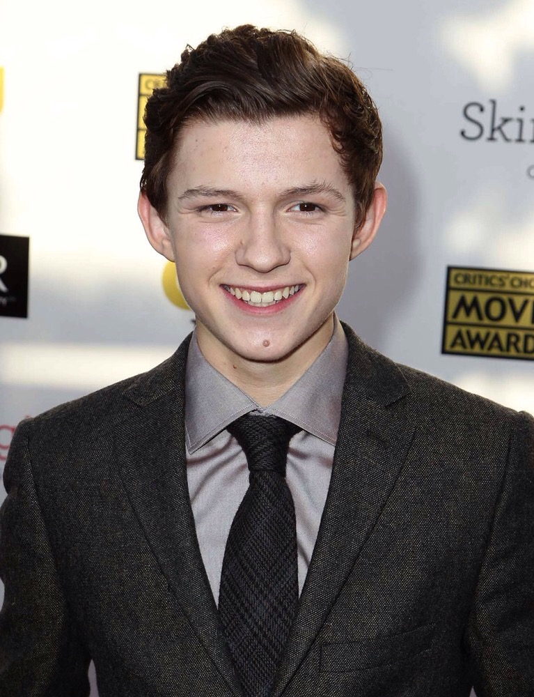 Tom Holland cast as Spider-Man